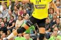 Unsere BVB Handballdamen